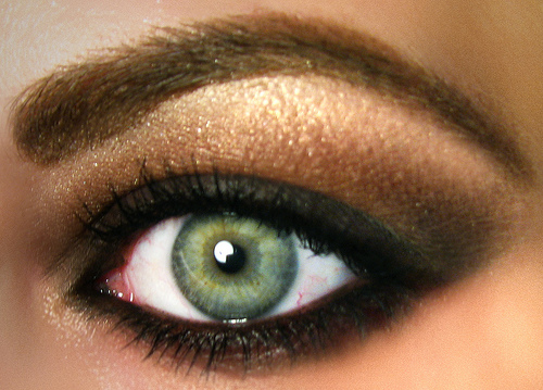 Fall Trend 2010 Grunge Smokey Brown MAC Eyeshadow