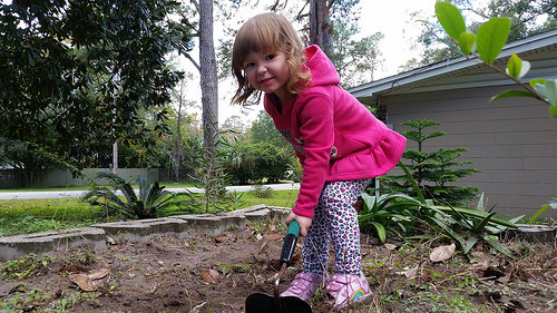 Helping With The Garden