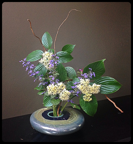 My first Ikebana this year. A good start.