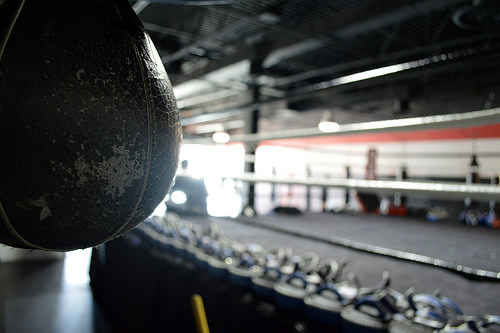 Boxing Ring and Speed Bag